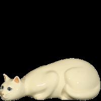Chat-à-laffut-blanc