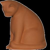 Chat-curieux-Brut