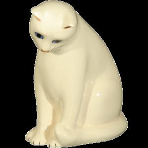 Chat curieux blanc